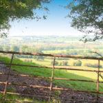 Wigley Orchard Caravan Site